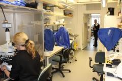 Barbara Canlon lab, von Eulers väg 8, level 2, May 2018
