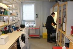 Ingelman Sundberg Lab, Nanna Svartz väg 2, level 1, May 2018, Mikael Kozyra