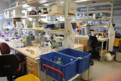 Mats Wahlgren/ Anders Björkman laboratory