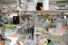 Yihai Cao group laboratory