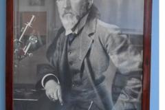 Oscar Hertwig (1849-1922)