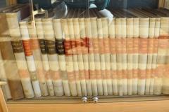Biologische untersuchungen by Gustav Retzius (19 volumes)